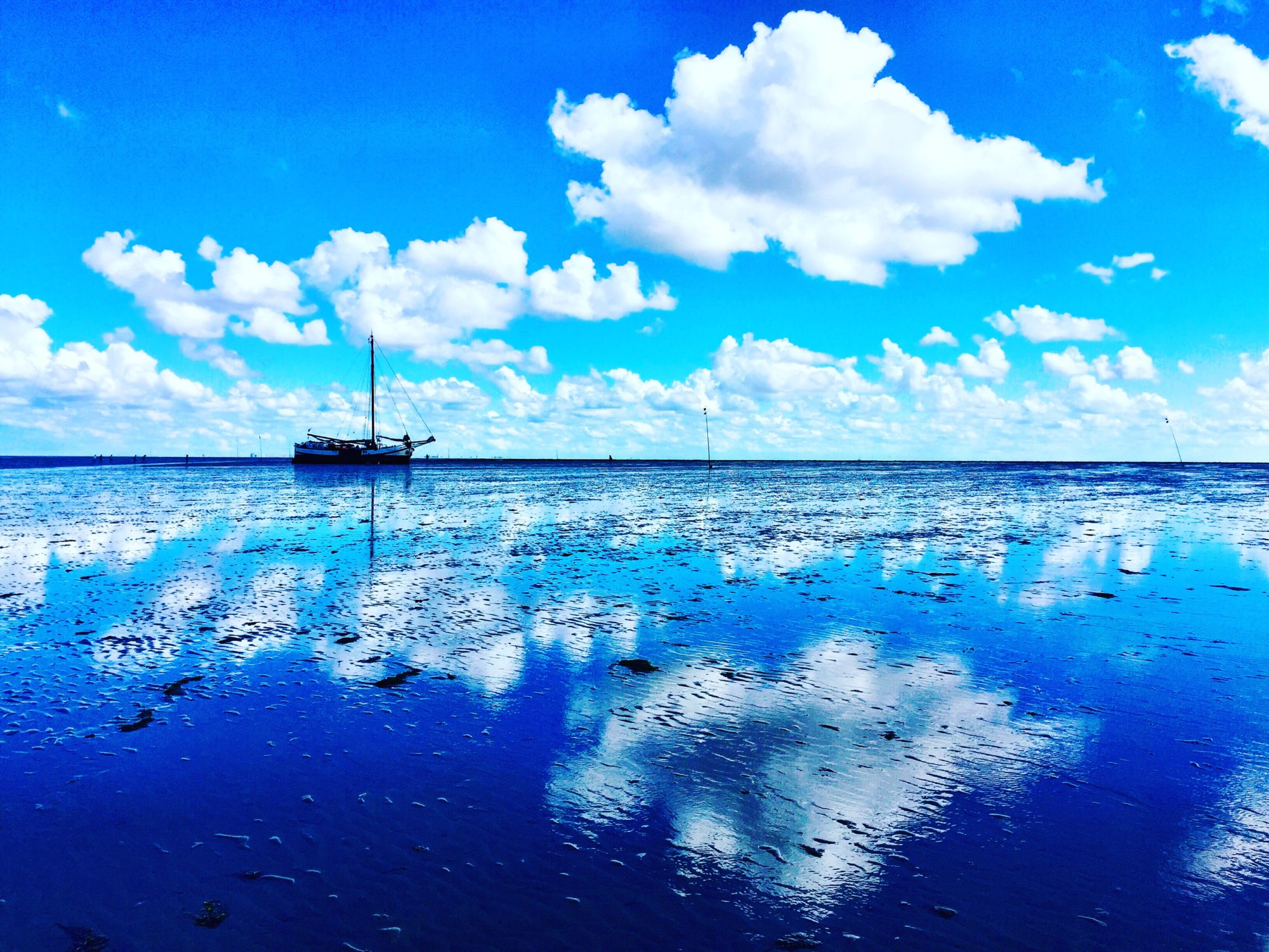 Droogvallen op de Waddenzee. Foto Sybylle Kroon