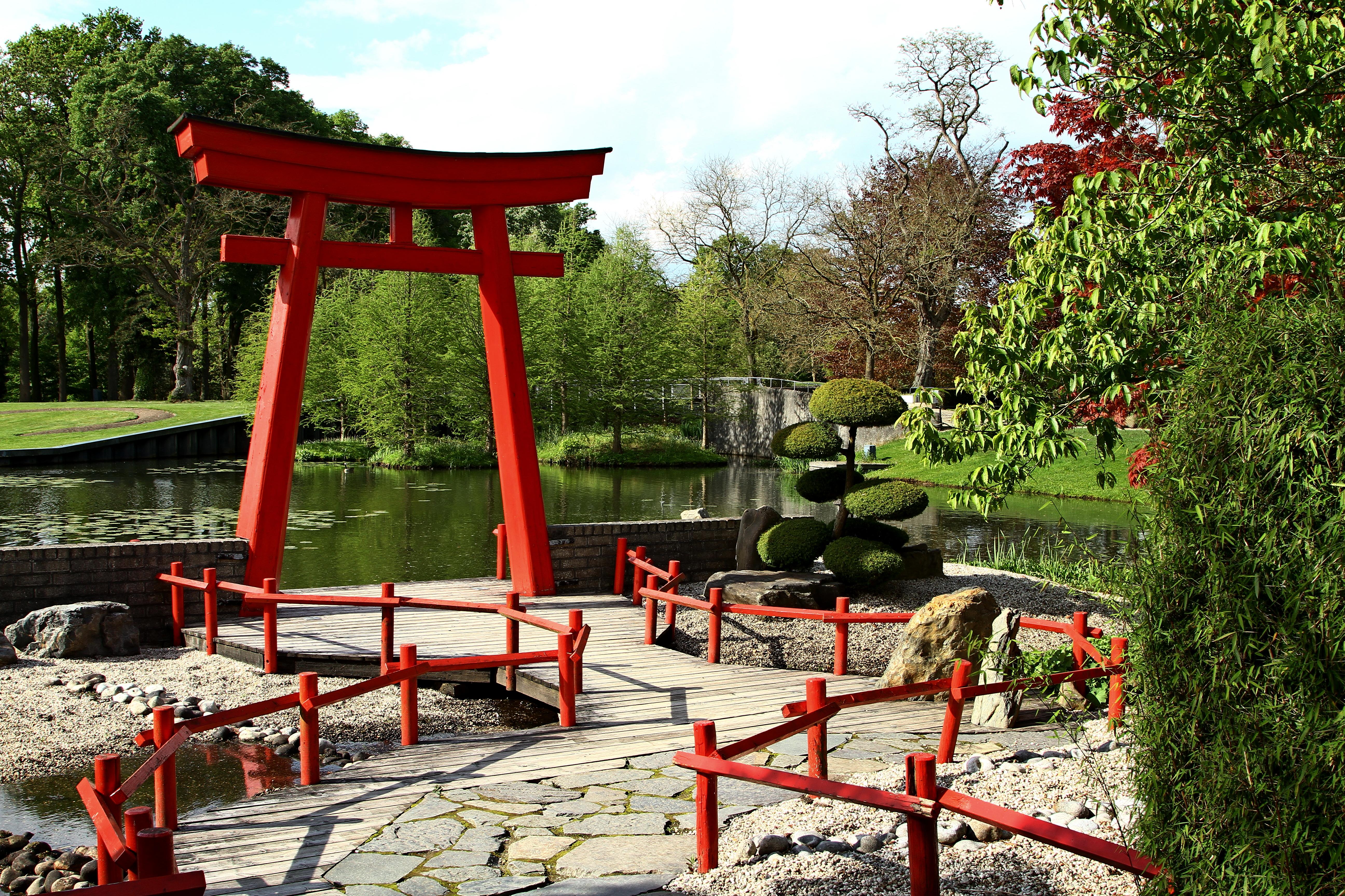 Japanse tuin in de kasteeltuinen van Arcen. Foto Sybylle Kroon