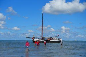 Wandelen op de bodem van de Waddenzee. Foto Sybylle Kroon