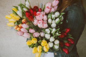 Bos tulpen. Foto Pixabay