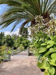 tropische sferen in de hortus